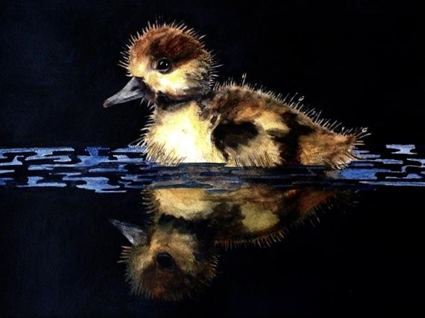 12.Duckling-20cmx30cm
