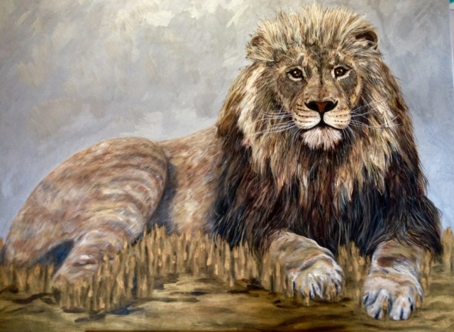 Kumar the Dublin Lion